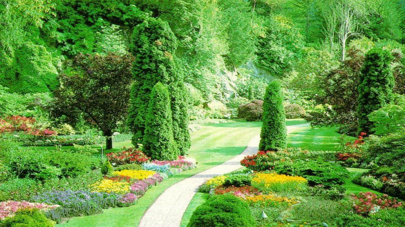 Graceful green summer garden landscape design facebook for Green landscape design