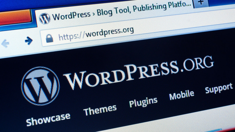 3 Critical WordPress Problems You Have to Fix